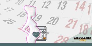 Calculadora de Gravidez